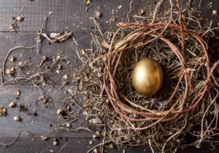 retirement nest egg savings annuity pension