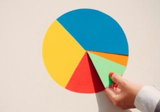 pie chart graph share