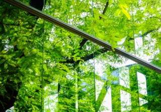 green home eco plants modern house