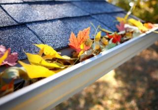 house gutter leaves autumn