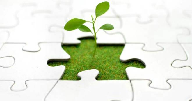 growth puzzle team addition business