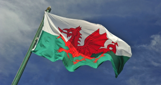 welsh wales flag dragon