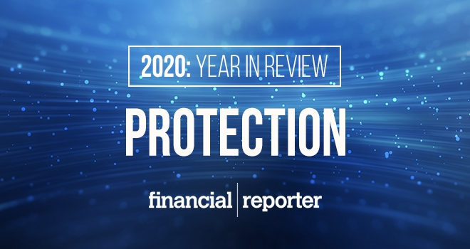 protection year in review